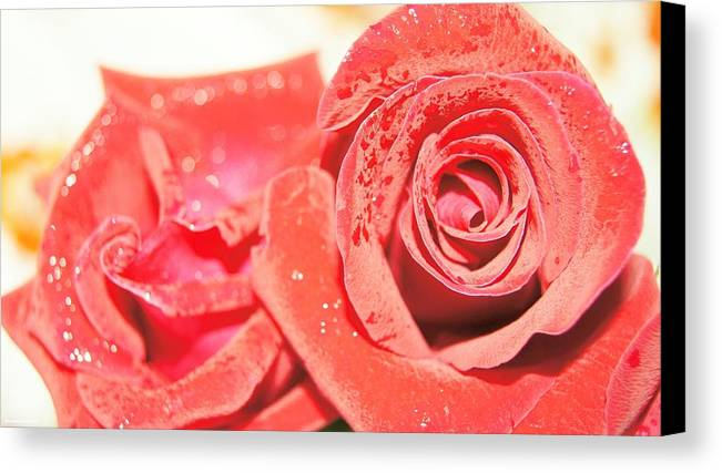 Canvas Print featuring the photograph Rose For You by Gornganogphatchara Kalapun