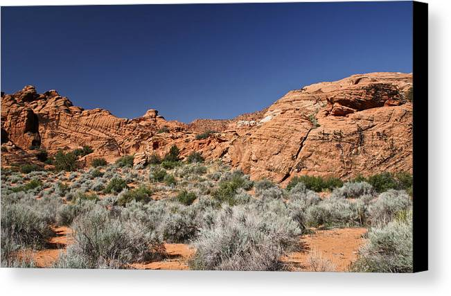 Blue Canvas Print featuring the photograph Now That's Blue Sky by John Black