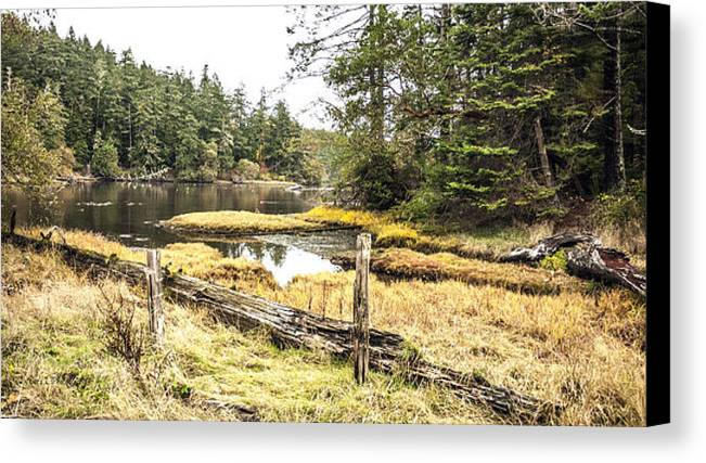 Falls Canvas Print featuring the photograph Witty's Lagoon - Autumn by Dorothy Hilde
