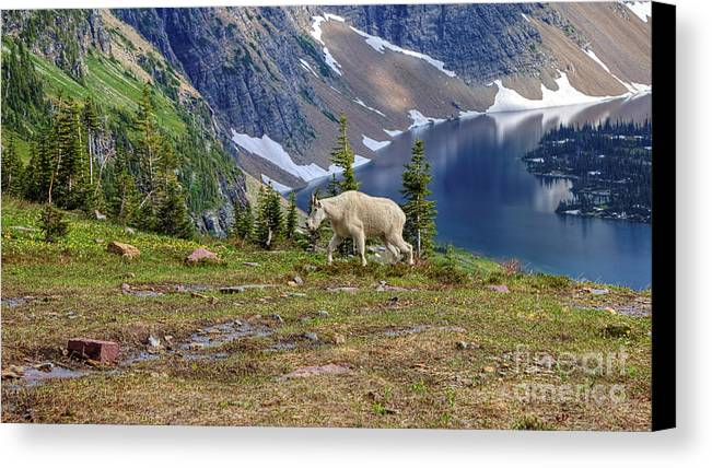 Hidden Lake Canvas Print featuring the photograph Hidden Landscape In Widescape by James Anderson
