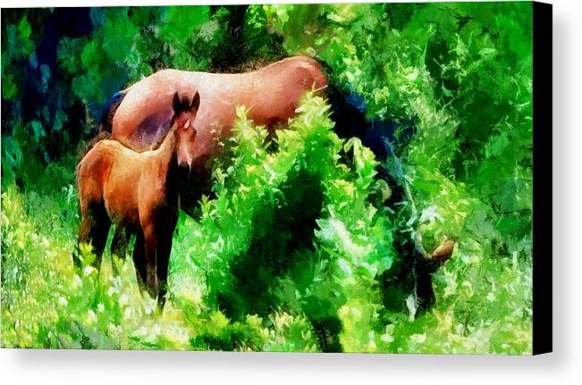 Horses Canvas Print featuring the photograph Horse Family by Galeria Trompiz