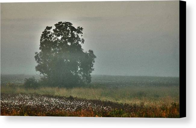 Flowers Canvas Print featuring the digital art Foggy Tree In The Field by Michael Thomas