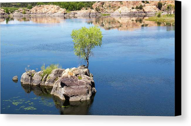 Island Canvas Print featuring the photograph Grow Where You're Planted by Amy Sorvillo