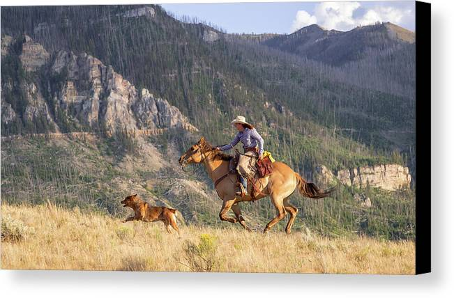 Cowboy Canvas Print featuring the photograph High Country Ride by Jack Bell