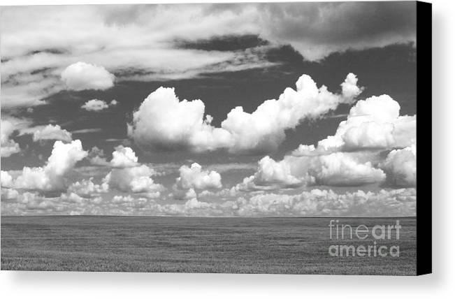 Nature Canvas Print featuring the photograph Life Simple by Peter Jamieson