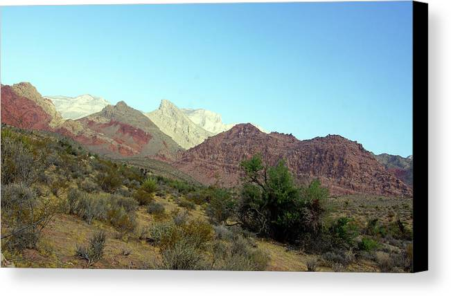 Desert Landscape Mountains Red Green Nature Plant Life Canvas Print featuring the photograph Nevada 1 by Florine Duffield