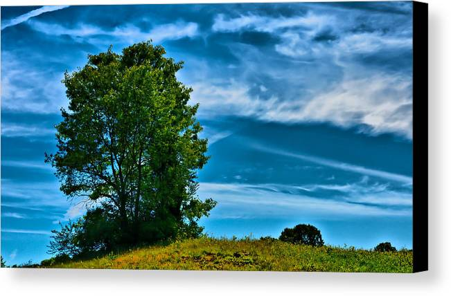 Ladscape Canvas Print featuring the photograph Sping Landscape In Nh 3 by Edward Myers
