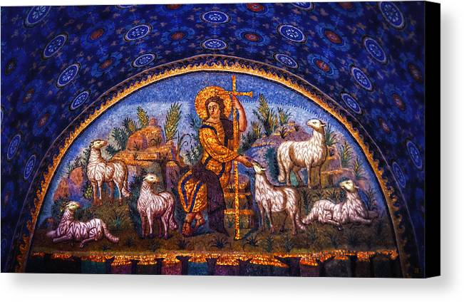 Galla Canvas Print featuring the photograph The Good Shepherd by Nigel Fletcher-Jones