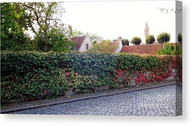Ivy Canvas Print featuring the photograph Autumn Ivy by Jessica Panagopoulos