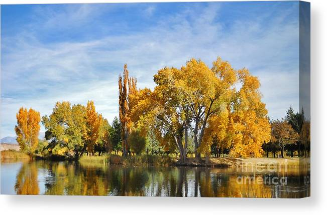 Fall Canvas Print featuring the photograph Fall by Marilyn Diaz