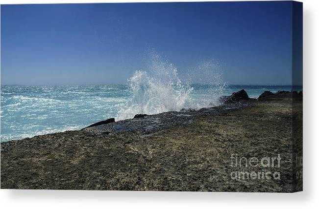 Beach Canvas Print featuring the photograph Message Of Nature by Bruno Santoro