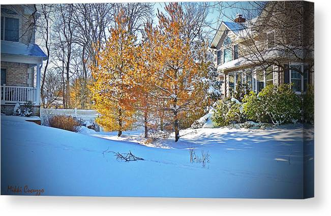 Seasonal Canvas Print featuring the photograph Snow Scene by Mikki Cucuzzo