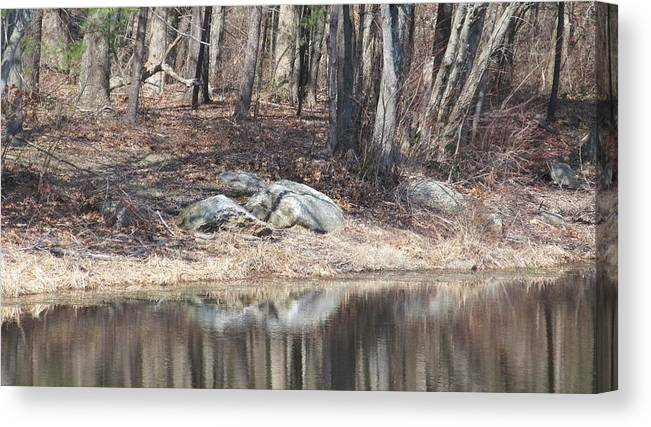 Nature Canvas Print featuring the photograph Wood Reflections by Loretta Pokorny