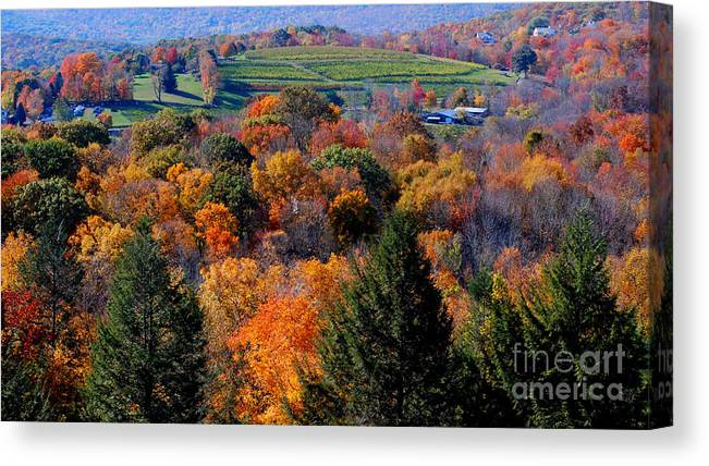 Autumn Canvas Print featuring the photograph Fall Profusion by Andrea Simon