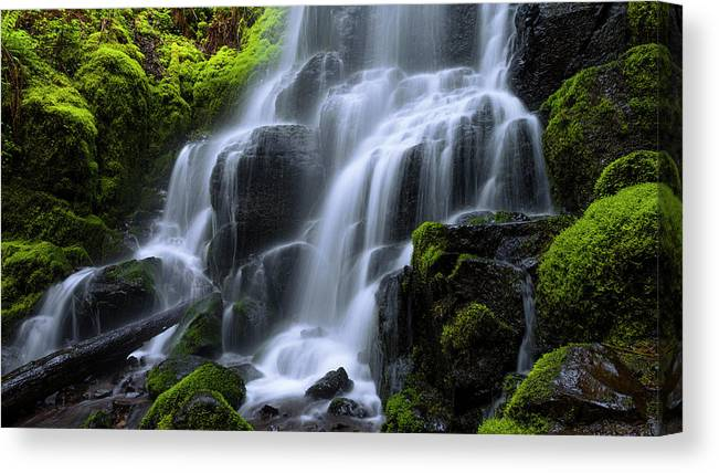 Falls Canvas Print featuring the photograph Falls by Chad Dutson