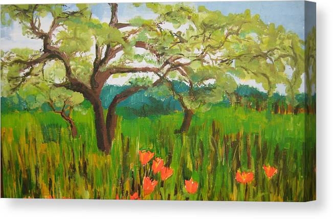 Landscape Canvas Print featuring the painting Field Of Red Poppies by Mabel Moyano