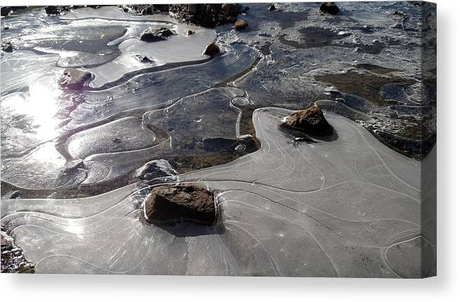 Winter Canvas Print featuring the photograph Ice Snakes by Tiffani Burkett