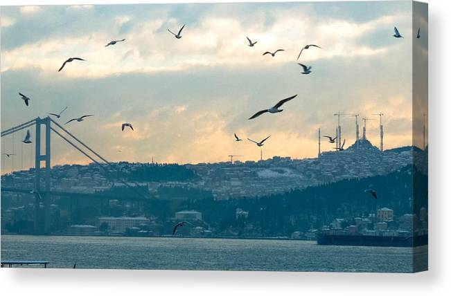 Istanbul Canvas Print featuring the photograph Istanbul, Morning by Chris Patel