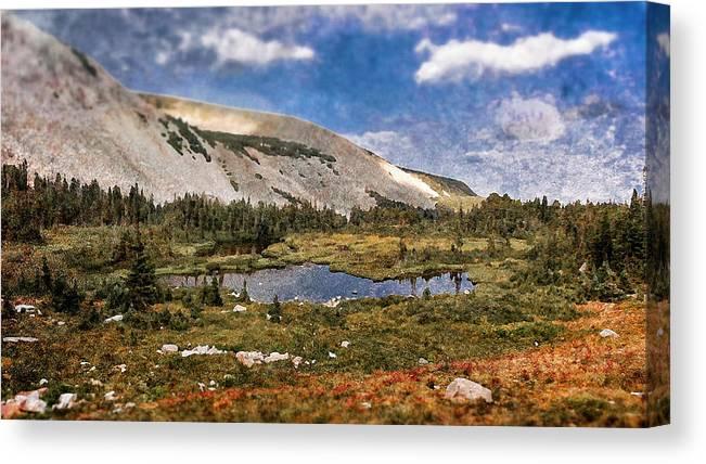Textured Prints Canvas Print featuring the photograph Peaceful Meadow by Garett Gabriel