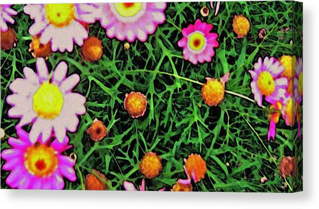 Pink Flowers Canvas Print featuring the digital art Pink Flowers by Cassandra Donnelly