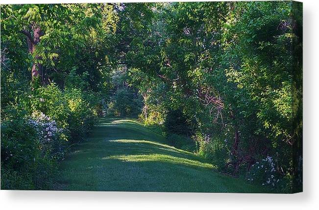 Garden Canvas Print featuring the photograph Secret Garden by Lawrence Roche