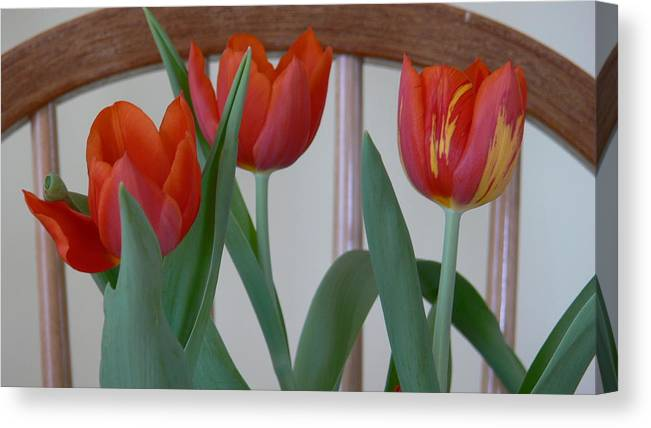 Spring Canvas Print featuring the photograph Tulips For You by Nancie DeMellia