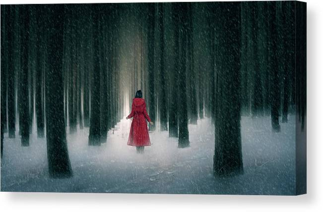 Red Riding Hood Canvas Print featuring the photograph Snow Day by Bingo Z