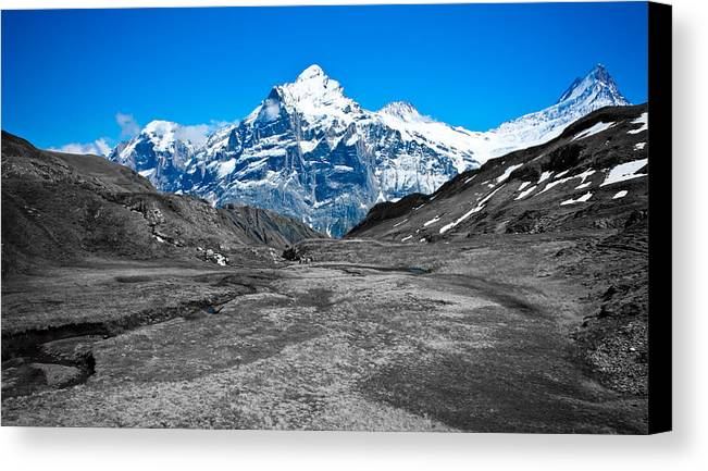 Alps Canvas Print featuring the photograph Swiss Alps - Schreckhorn And Valley In Black And White by Anthony Doudt