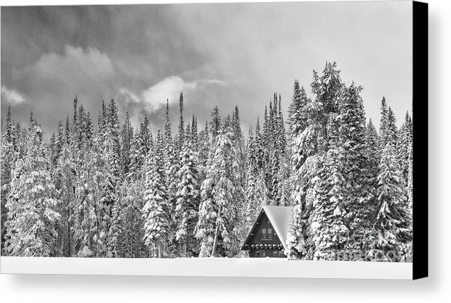 Black & White Canvas Print featuring the photograph Taking Refuge - Grand Teton by Sandra Bronstein
