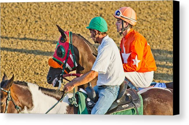 Horse Canvas Print featuring the photograph Eye On The Athlete by Betsy Knapp