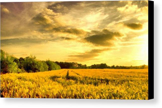 Wall Canvas Print featuring the digital art Art Nature by Usa Map