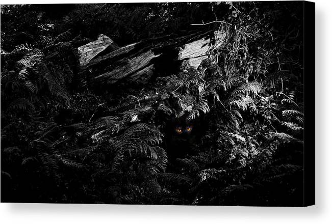 B&w Canvas Print featuring the photograph A Beast Of The Wild Woods. A Magical Fairytale Fine Art Photographic Print by Lee Thornberry