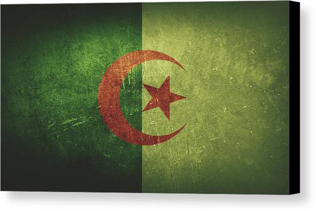 Algeria Canvas Print featuring the painting Algeria Distressed Flag Dehner by T Shirts R Us -