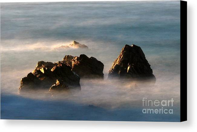 Rock Canvas Print featuring the photograph Nature by Catherine Lau