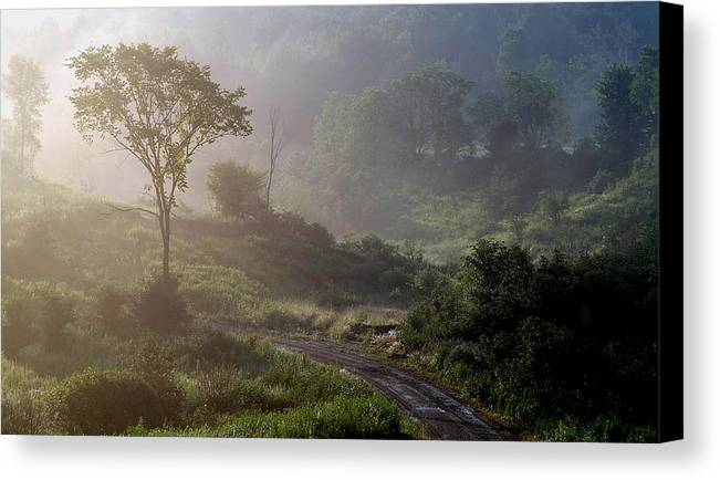 Landscape Canvas Print featuring the photograph Nature by Robert Ruscansky
