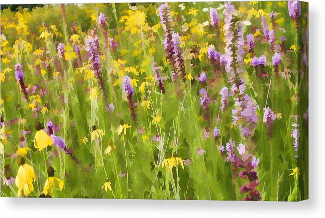 Wild Flowers Blazing Star Canvas Print featuring the photograph Blazinger Star by Barry Schroeder