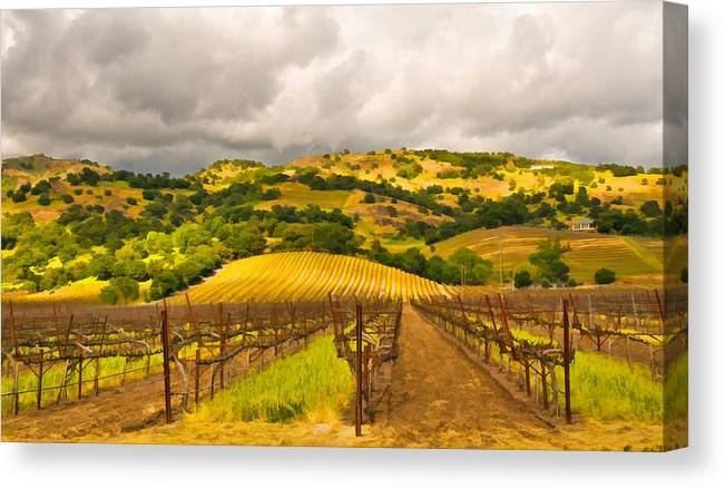Napa Valley Canvas Print featuring the digital art Napa Vineyard by Mick Burkey