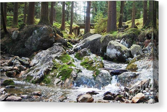 Ireland Art River Woodland Outdoors Rocks Travel Stock Shot Rural Wicklow Countryside Sylvan Setting Canvas Print featuring the photograph A River Scene In Wicklow, Ireland by Courtney Dagan