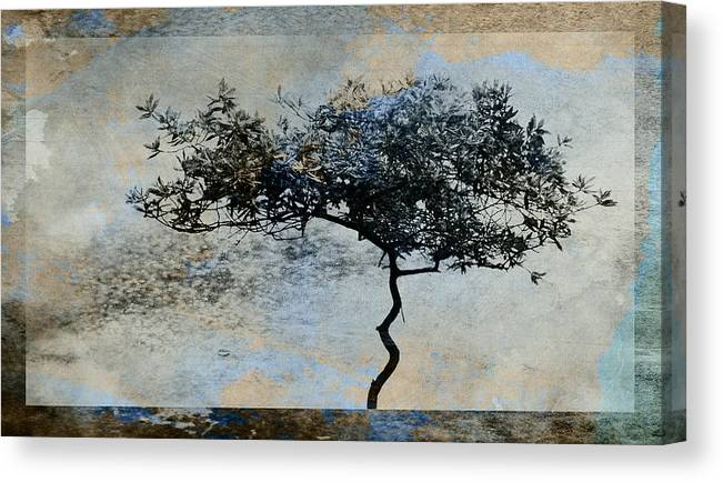 Tree Canvas Print featuring the digital art Twisted Tree by David Ridley