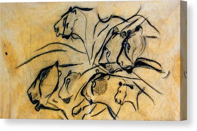 Chauvet Cave Lions Clear Canvas Print Canvas Art By