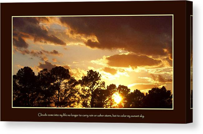 Rejoice Canvas Print featuring the photograph Rejoice by Ginger Howland