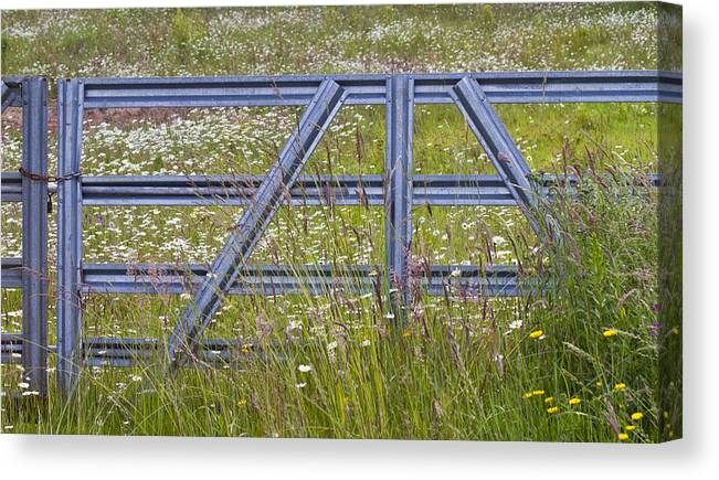 Gate Canvas Print featuring the photograph The Gate II by Rebecca Cozart
