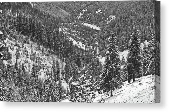 Giurgeu Mountains Canvas Print featuring the photograph Winter Landscape In Giurgeu Mountains by Gabriela Insuratelu