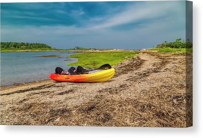 Goat Canvas Print featuring the photograph Kayaking Adventure In Maine by Betsy Knapp