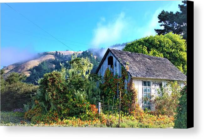 Cottage Canvas Print featuring the photograph Northern California Cottage by Lisa Dunn
