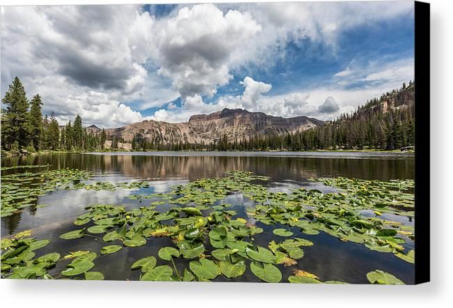 Utah Canvas Print featuring the photograph Summer Splendor by Darlene Smith
