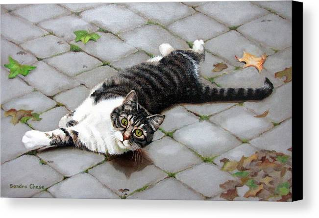 Cat Canvas Print featuring the painting You Called? by Sandra Chase