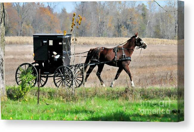 Amish Buggy Canvas Print featuring the photograph Amish Buggy by David Arment