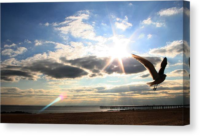 Coney Island Canvas Print featuring the photograph Coney Island Flare by Jason Hochman
