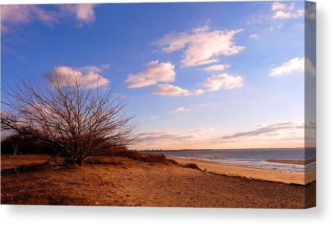 Landscape Canvas Print featuring the photograph Listen To The Quiet by Kendall Eutemey